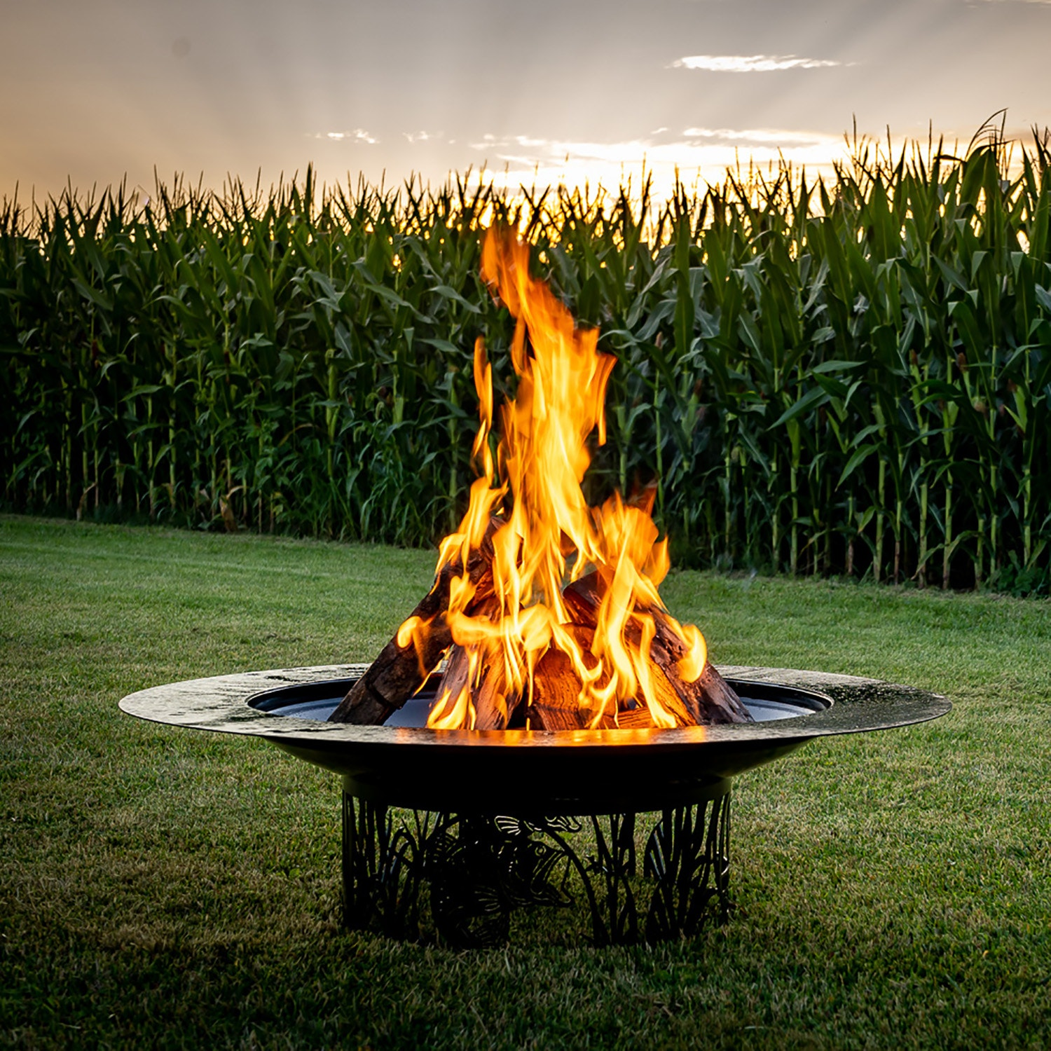 Steel Living Wood Burning Fire Pits